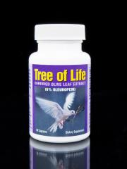 Tree of Life  Olive Leaf Extract