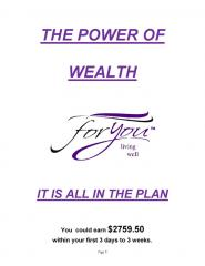 The Power of Wealth Plan (4)